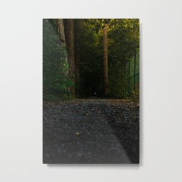 Through Straight & Narrow Metal Print