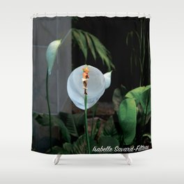 An rioct elves 2 (le royaume des elfes 2) Shower Curtain