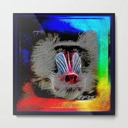 Primate Models: Mandrill Baboons 01-01 Metal Print