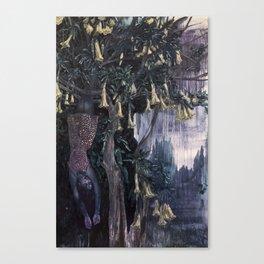 Honey Dreaming Canvas Print