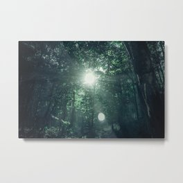 Canopy Worship Metal Print