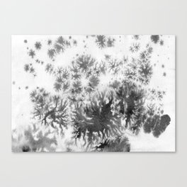 Grey grows and spreading Canvas Print