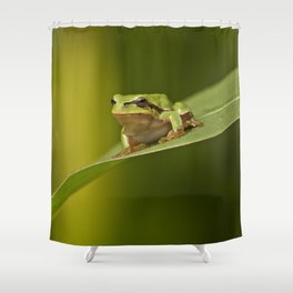 Frog's life Shower Curtain