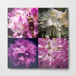 Rhododendron & dragonfly Metal Print