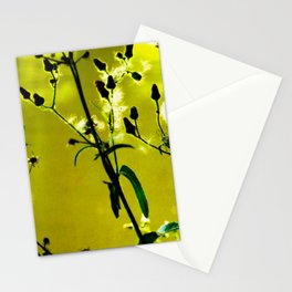Kissed by the Sun 2 Stationery Cards