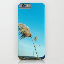 """""""Photography of Nature"""" Winter Reeds with Church, on the Sky the Moon and a Plane at Piliscsev iPhone Case"""