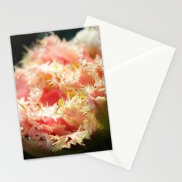 Pink Parrot Tulip Stationery Cards