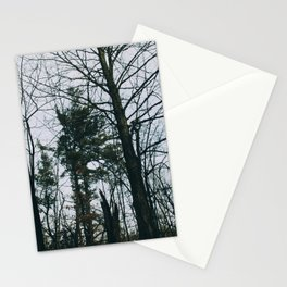 Colorless forest Stationery Cards