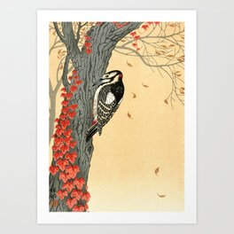 Woodpecker pecking on a tree with red ivy - Japanese vintage woodblock print Art Print