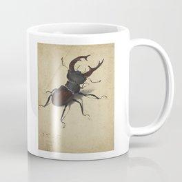 Stag Beetle - Albrecht Durer Coffee Mug