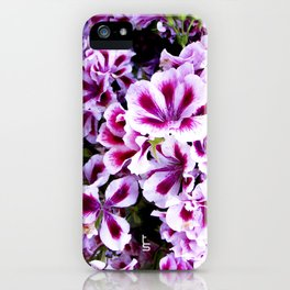 Martha Washington Geranium I iPhone Case