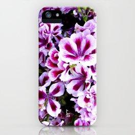 Martha Washington Geranium I iPhone Case