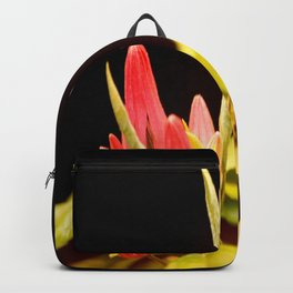 Exotic Colorful Flowers On A Black Background #decor #society6 Backpack