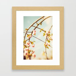 Cut through the Garden V Framed Art Print