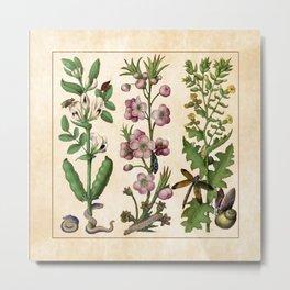Flowers I - Grandes Heures d'Anne de Bretagne Metal Print