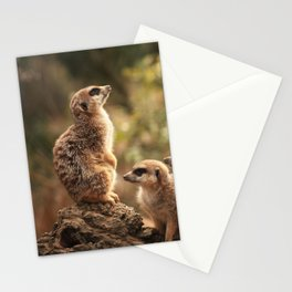 Meerkat Family Photography Stationery Cards