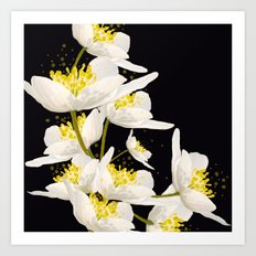 White Flowers On A Black Background #decor #buyart #society6 Art Print