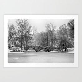 Stone Bridge at Clove Lakes Staten Island Art Print