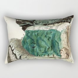 Vintage Mineralogy Illustration Rectangular Pillow