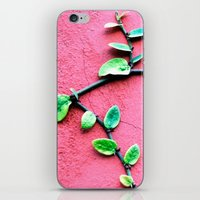 plant iPhone & iPod Skins featuring plant by Baptiste Riethmann
