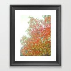 Orange Frosted Framed Art Print