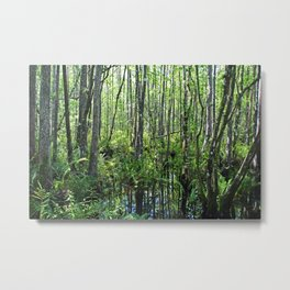 When the Cypress Whispers Metal Print