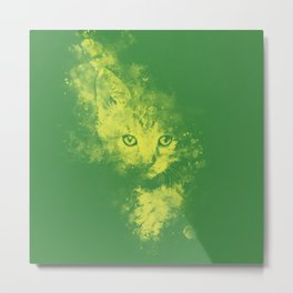 abstract young cat wsgy Metal Print