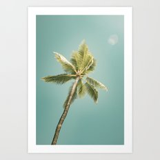 palm tree ver.summer 02 Art Print