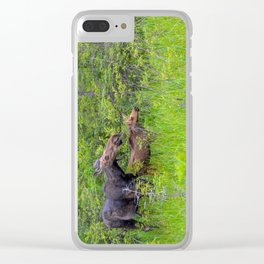 Moose and calf by Teresa Thompson Clear iPhone Case