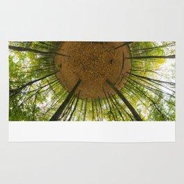 Le bois de Vincennes à l'automne // The forest of Vincennes in autumn Rug