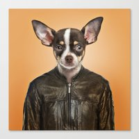 chihuahua Canvas Prints featuring Chihuahua  by Life on White Creative