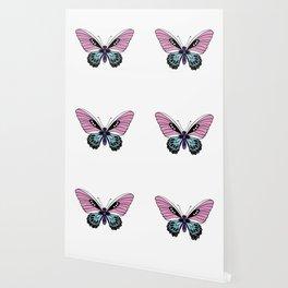 Butterfly Love Wallpaper