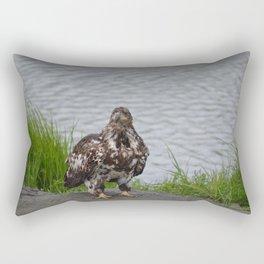 Eagle - Immature Baldy Rectangular Pillow