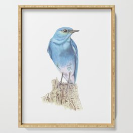 Mountain Bluebird Serving Tray
