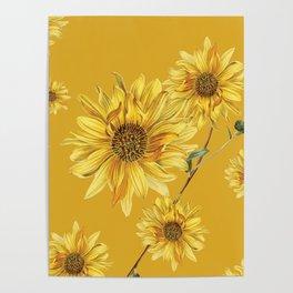 Sunflower Pattern 3 Poster