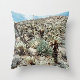 Mountain Cholla Throw Pillow