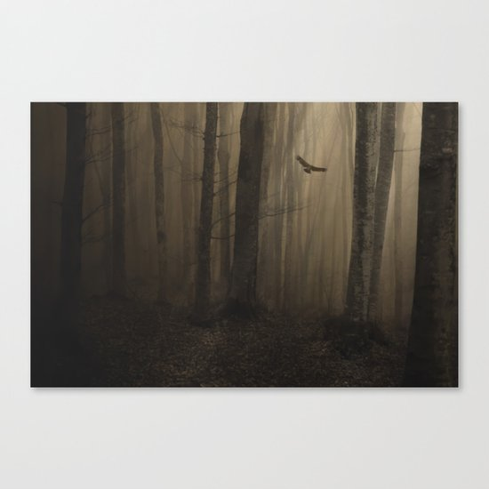 Return to the light Canvas Print