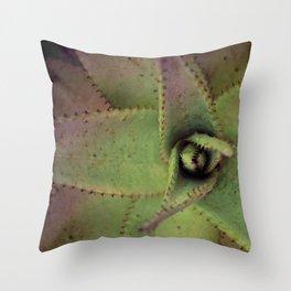 Succulent cactus close-up - Aloe Photography #Society6 Throw Pillow