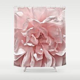 Pink Blush Rose Shower Curtain