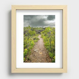 The path of Cerrado. Rocky trail surrounded by the Cerrado vegetation of Brazil on a cloudy day. Recessed Framed Print