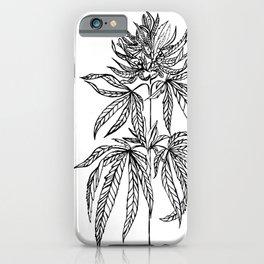 Cannabis Illustration iPhone Case