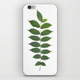 Green Leaf Botanical Print iPhone Skin