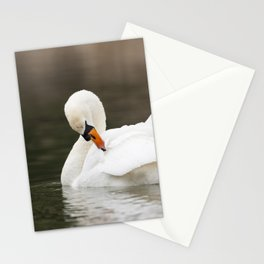 Mute Swan Stationery Cards
