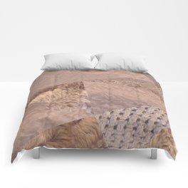 Ending of an Era Comforters
