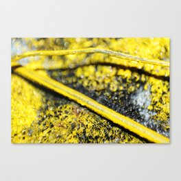 yellomaker Canvas Print