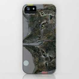 Grey Cats iPhone Case