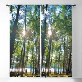 Tree Grove & Lake Sunrise Blackout Curtain