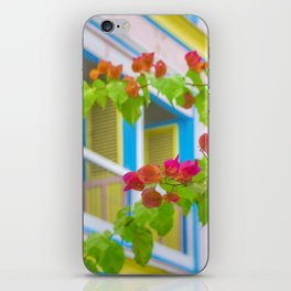 Colored Flowers in Front of Windows House iPhone Skin