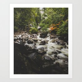 Shannon Falls Creek Art Print