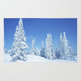 Winter 12 Rug